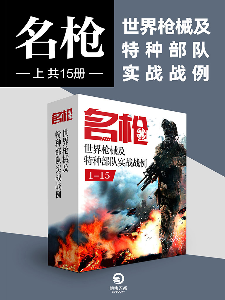 名枪:世界枪械及特种部队实战战例(上 共15册)