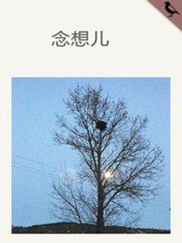 念想儿(千种豆瓣高分原创作品·短故事)