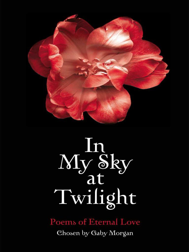 In My Sky at Twilight