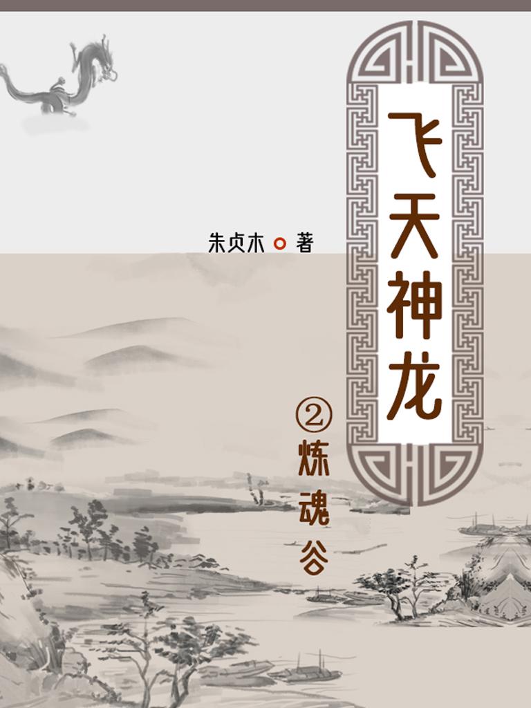 飞天神龙 2:炼魂谷