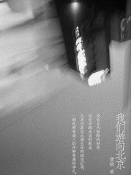 我们游向北京(千种豆瓣高分原创作品·世间态)