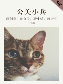 公关小兵(千种豆瓣高分原创作品·看行业)