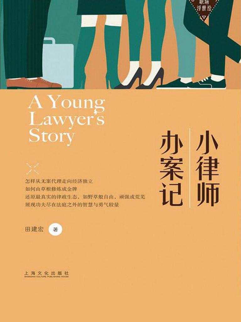 小律师办案记(职场浮世绘)
