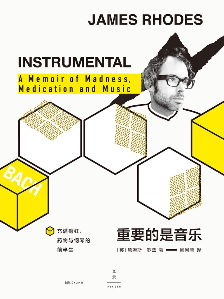 重要的是音乐:充满癫狂、药物与钢琴的前半生