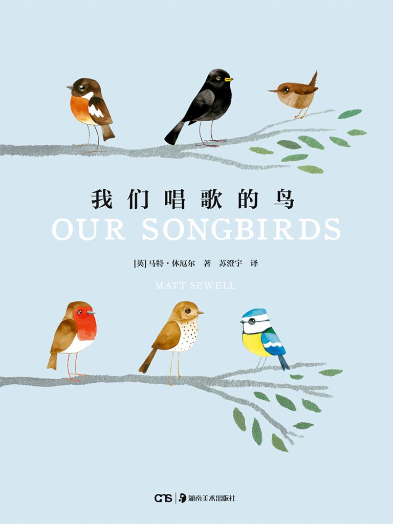 我们唱歌的鸟