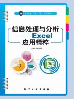 信息处理与分析:Excel应用精粹
