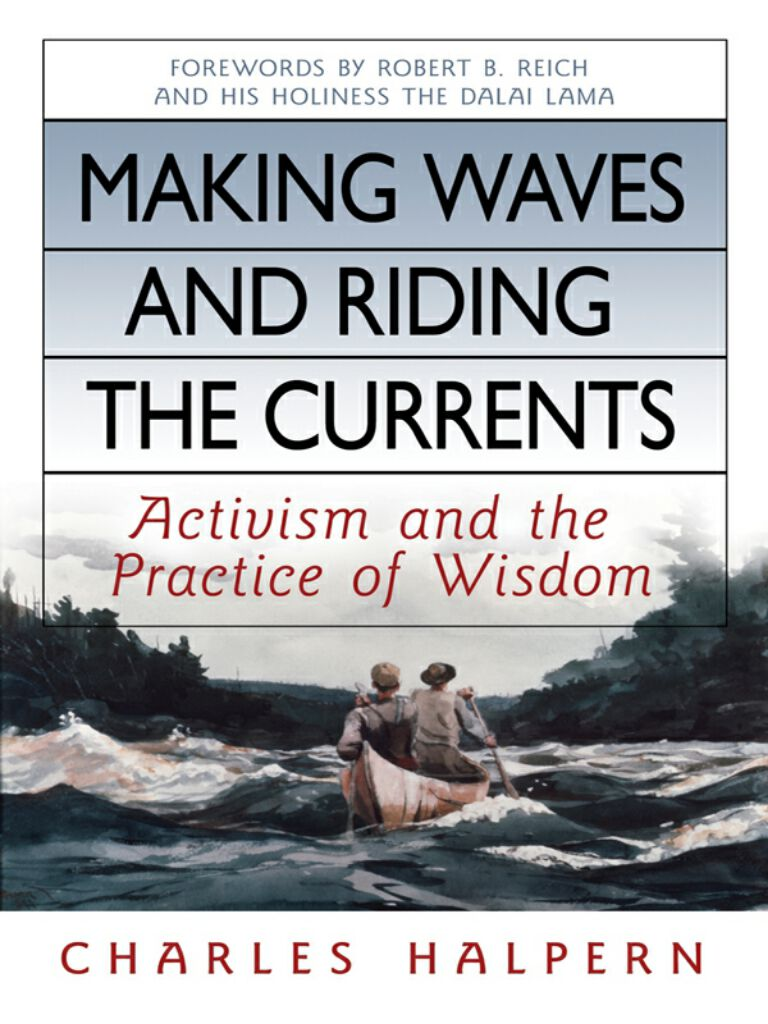 Making Waves and Riding the Currents-Activism and the Practice of Wisdom