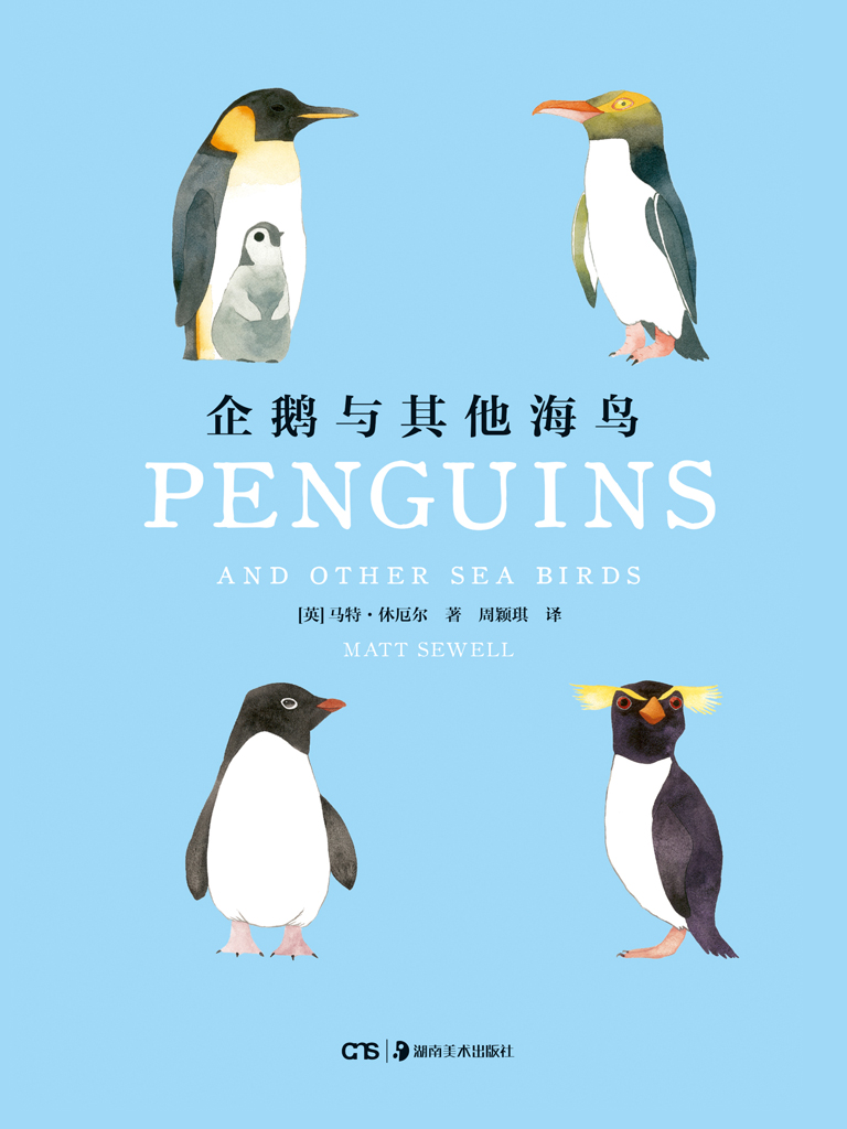 企鵝與其他海鳥