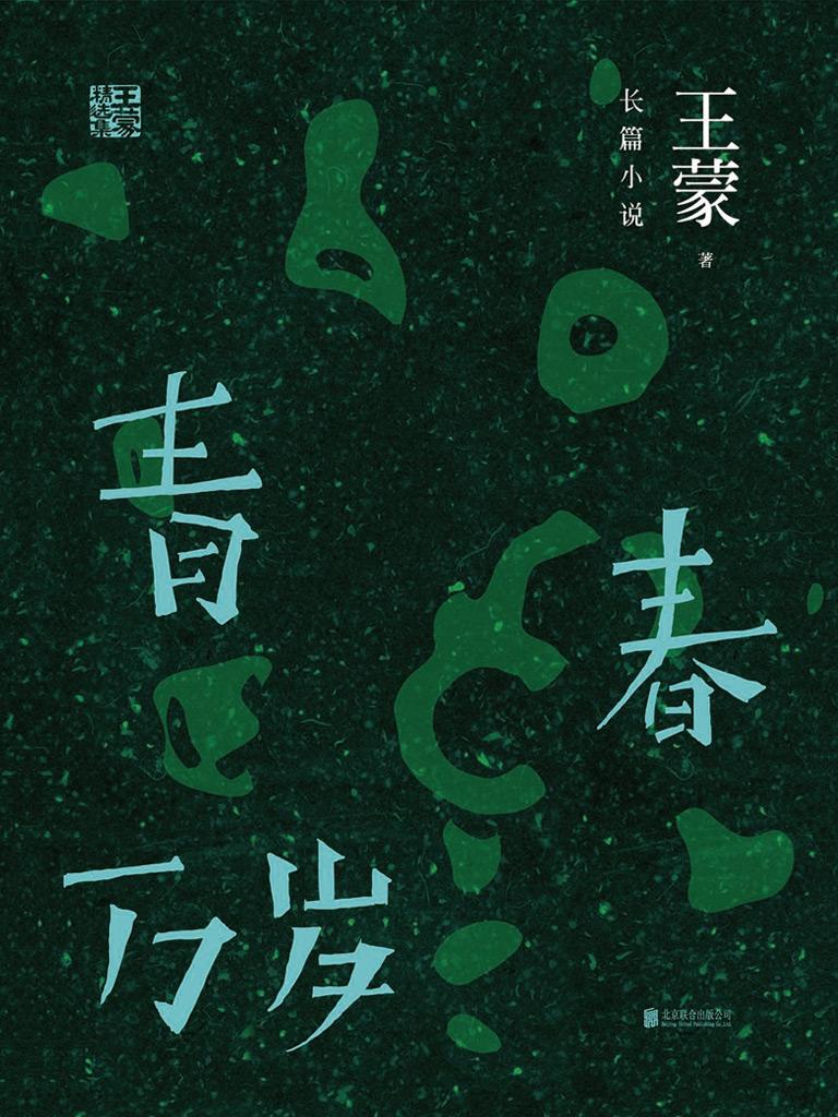 王蒙精选集:青春万岁