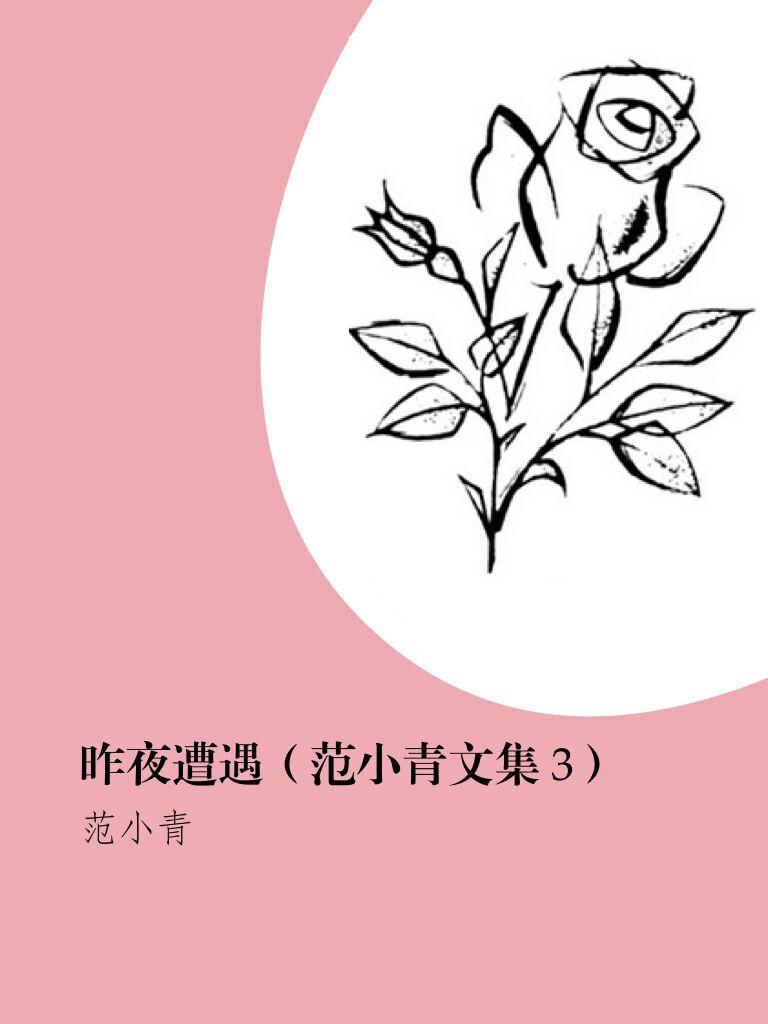昨夜遭遇(范小青文集 3)