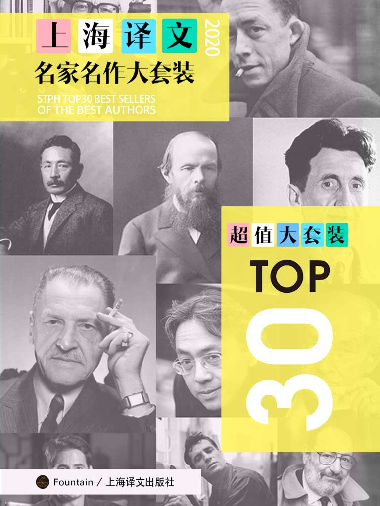 上海译文TOP30名家名作大套装(共30册·2020年版)