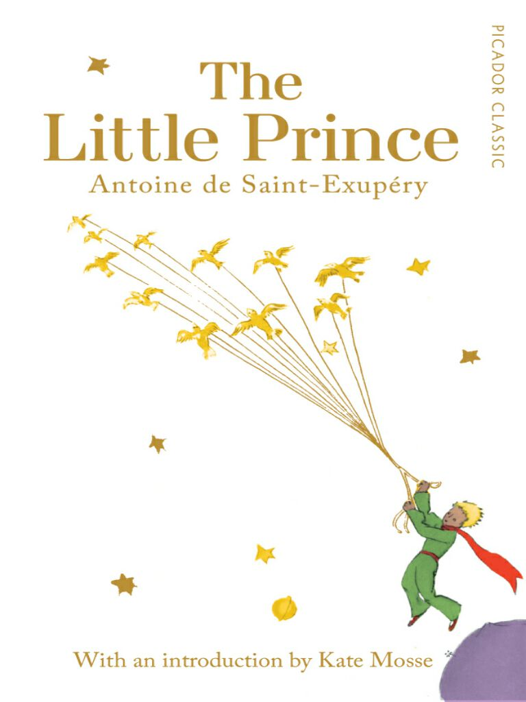 The Little Prince #10