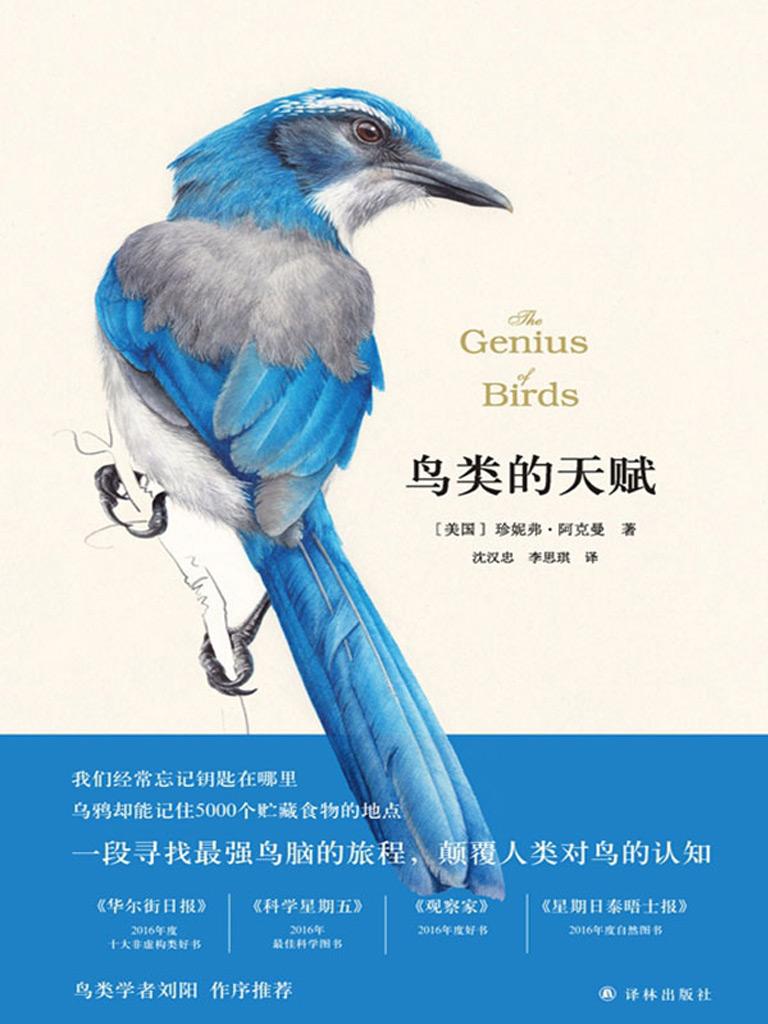 鸟类的天赋(天际线丛书)