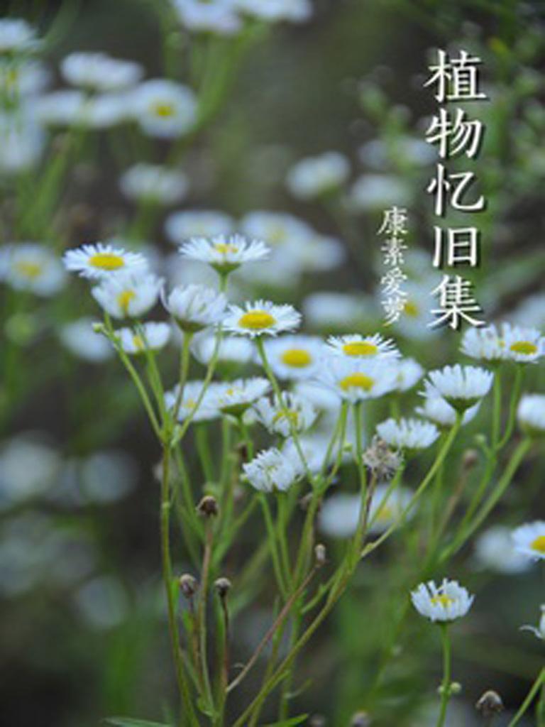 植物忆旧集(千种豆瓣高分原创作品·世间态)