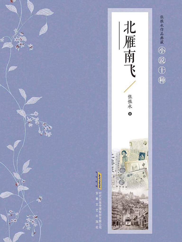 北雁南飞(张恨水作品典藏)