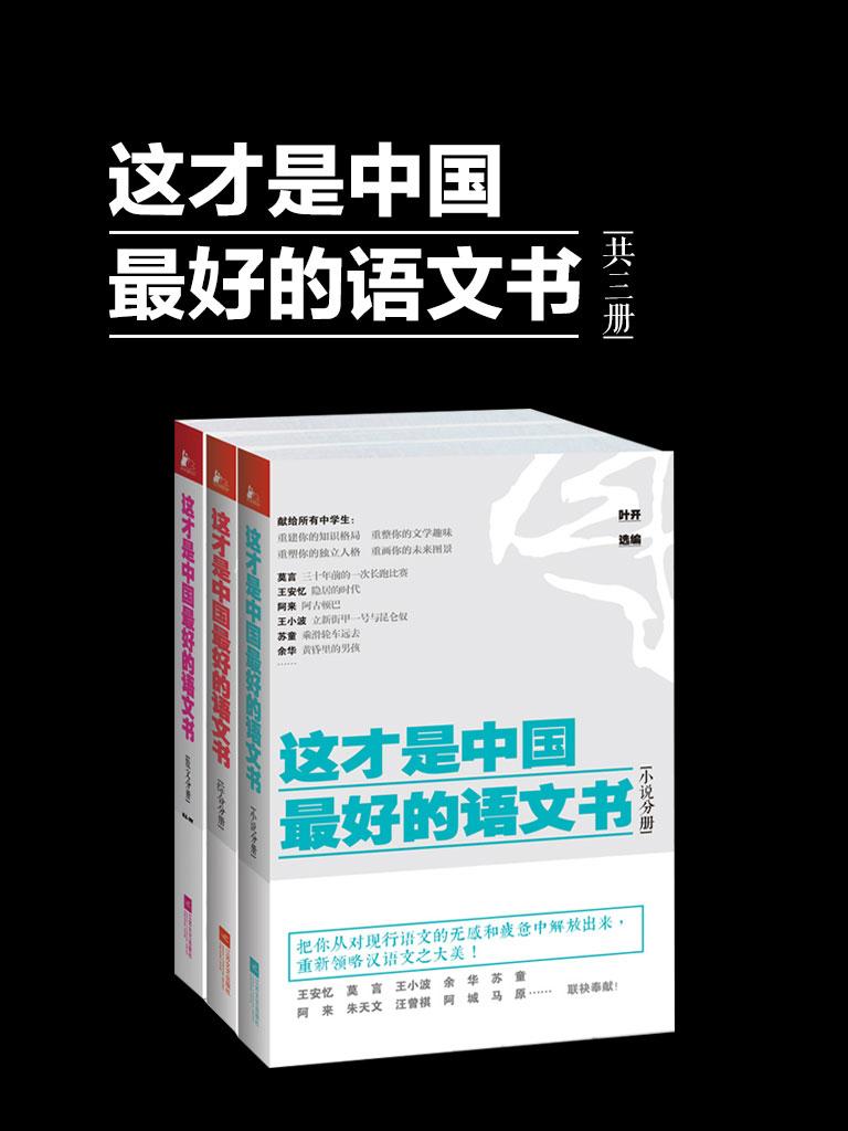 这才是中国最好的语文书(共三册)