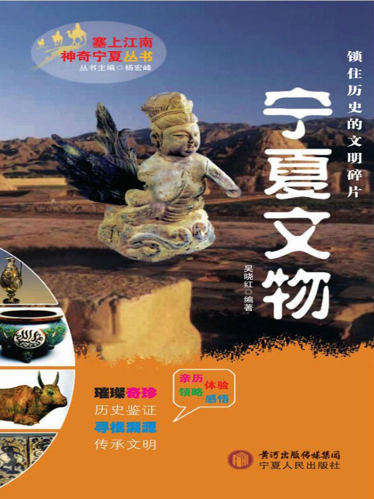 宁夏文物(塞上江南 神奇宁夏丛书)