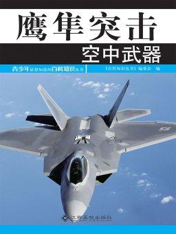 鹰隼突击:空中武器
