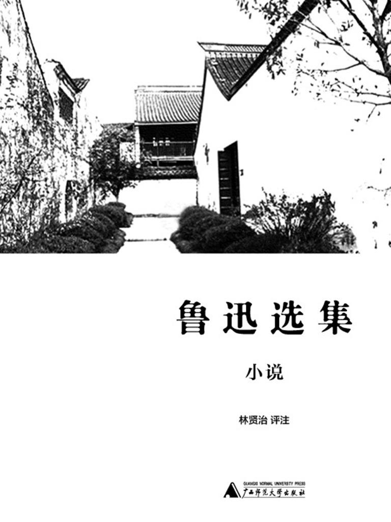 新民说:鲁迅选集·小说