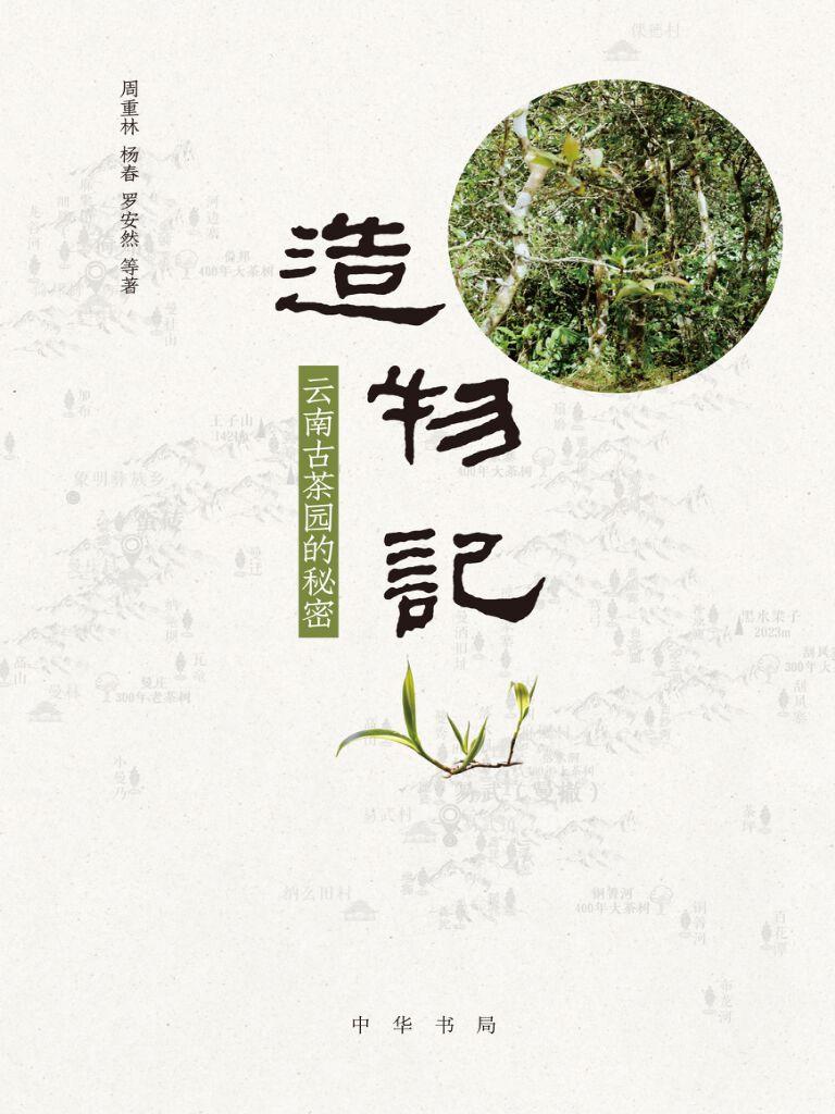 造物记:云南古茶园的秘密