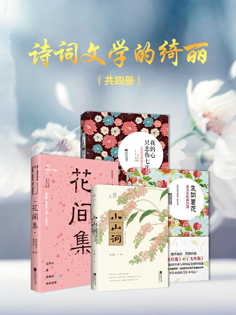 诗词文学的绮丽(共四册)
