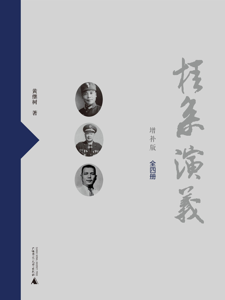 桂系演义(增补版 全四册)