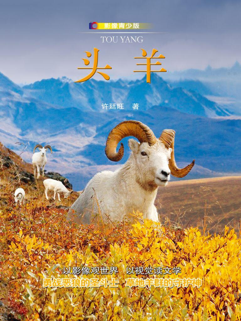 头羊(影像青少版)