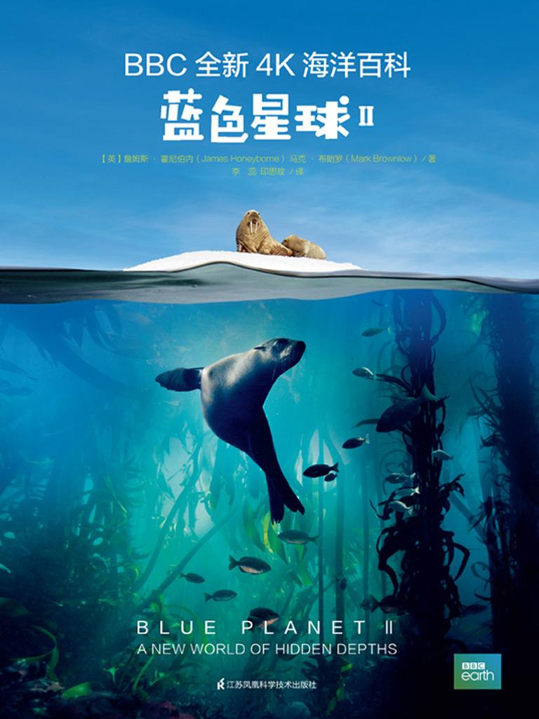 蓝色星球 II(BBC全新4K海洋百科)