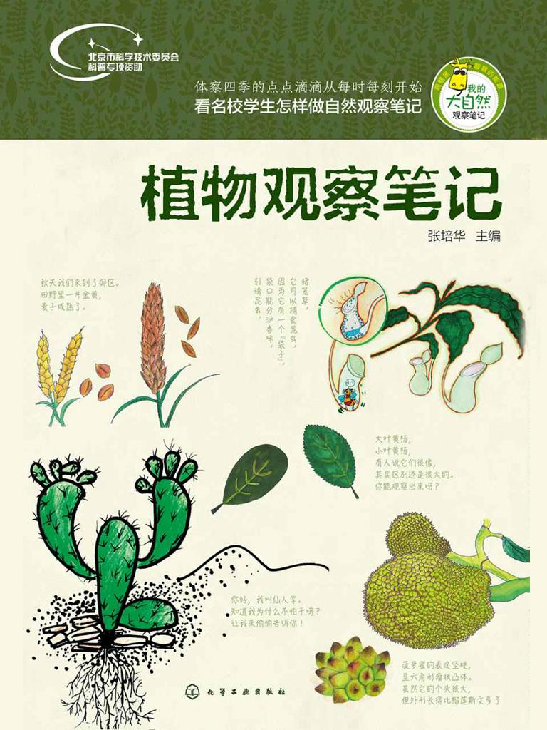 植物观察笔记