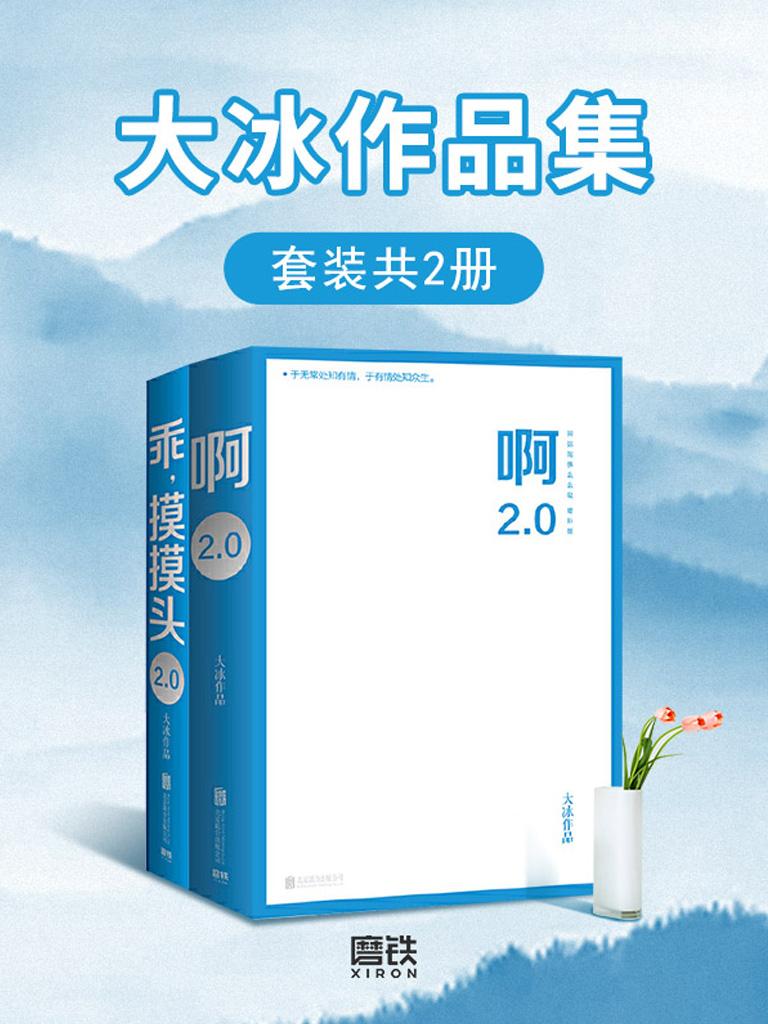 大冰作品集(套装共2册)