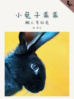 小兔子乖乖(千种豆瓣高分原创作品·懂生活)