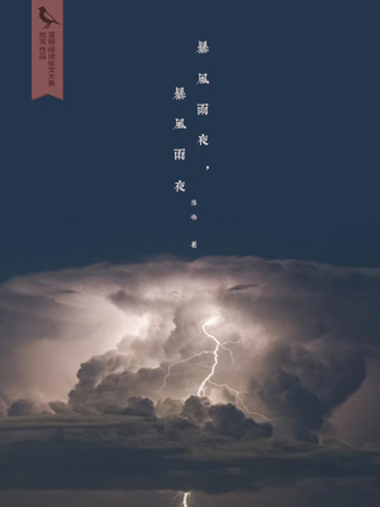 暴风雨夜,暴风雨夜(千种豆瓣高分原创作品·世间态)
