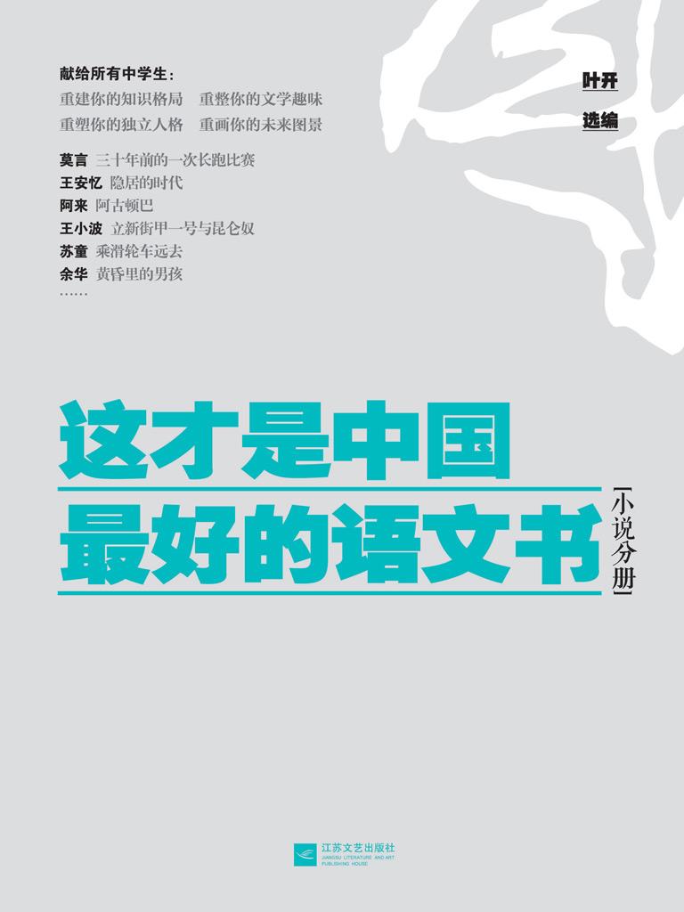 这才是中国最好的语文书(小说分册)