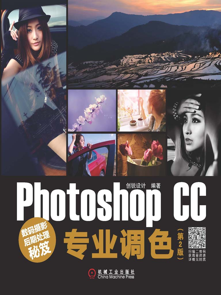 数码摄影后期处理秘笈:Photoshop CC专业调色(第2版)
