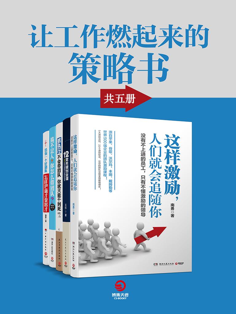 让工作燃起来的策略书(共五册)