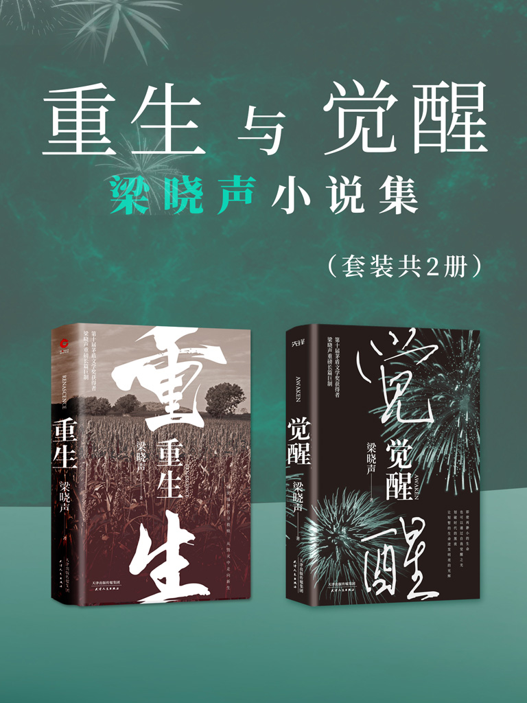 重生与觉醒:梁晓声小说集(套装共2册)