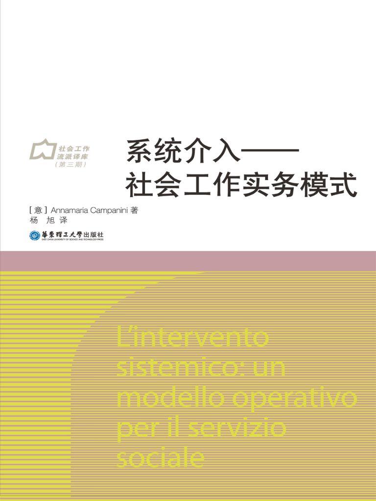 系统介入:社会工作实务模式