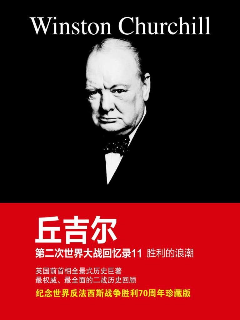 胜利的浪潮(丘吉尔第二次世界大战回忆录 11)