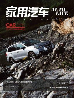 家用汽车(2016年6-7月合刊)