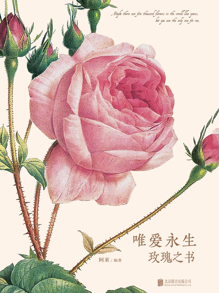 唯爱永生(玫瑰之书)