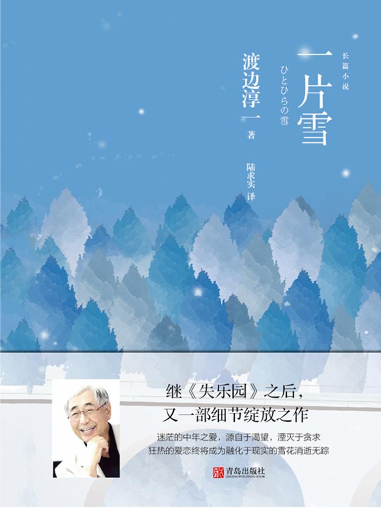一片雪(渡边淳一著)