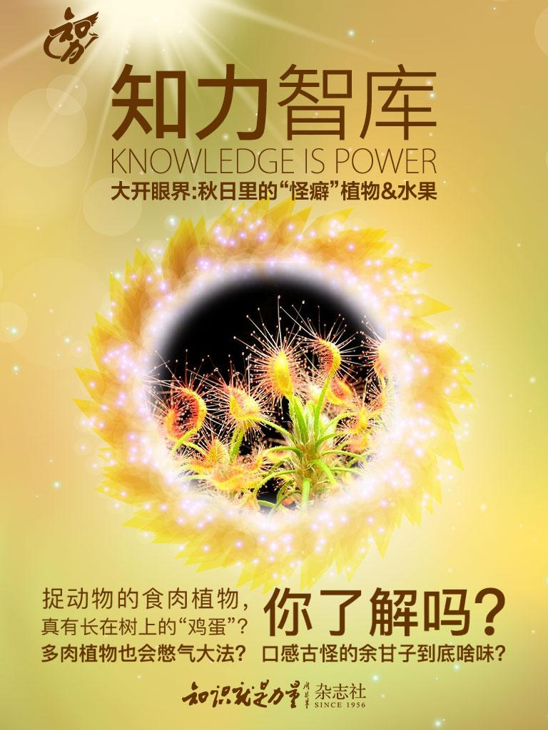 """知力智库·大开眼界:秋日里的""""怪癖""""植物&水果"""