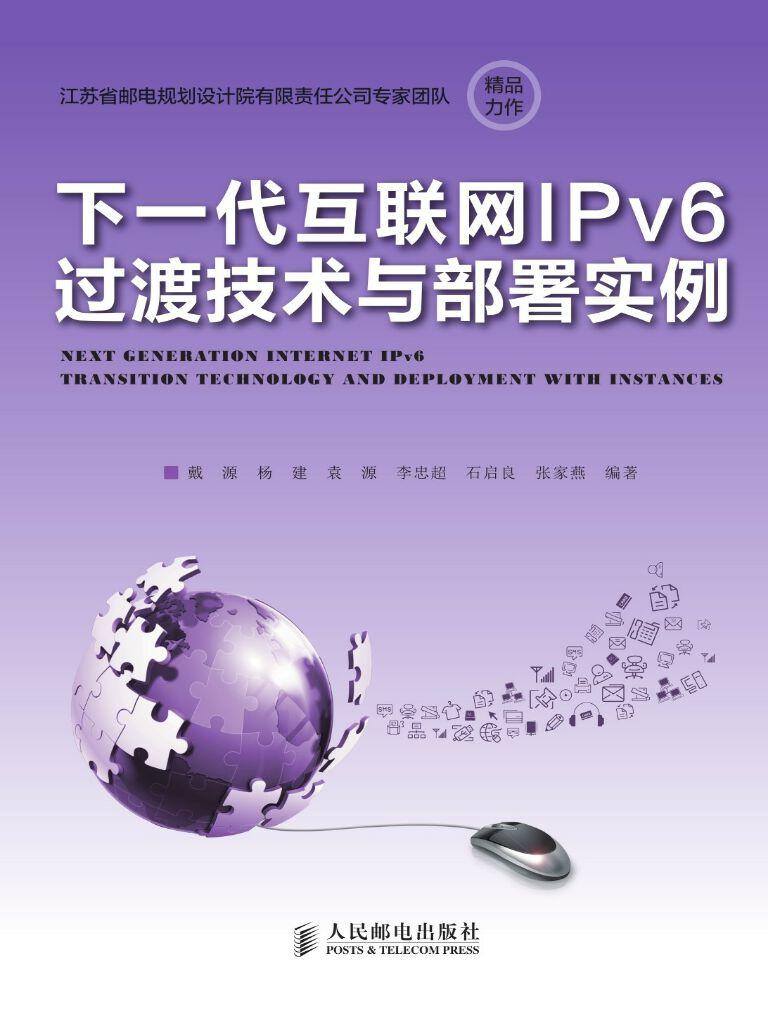 下一代互联网IPv6过渡技术与部署实例
