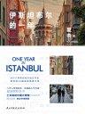 伊斯坦布尔的一年