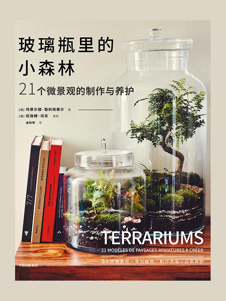 玻璃瓶里的小森林:21个微景观的制作与养护