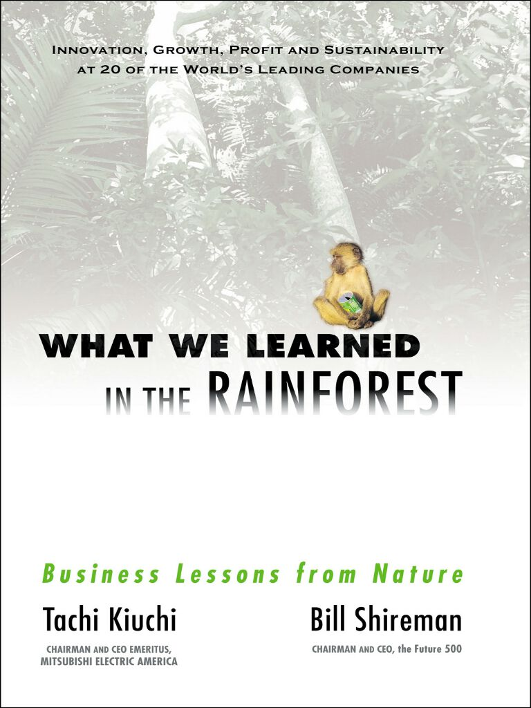 What We Learned in the Rainforest-Business Lessons from Nature