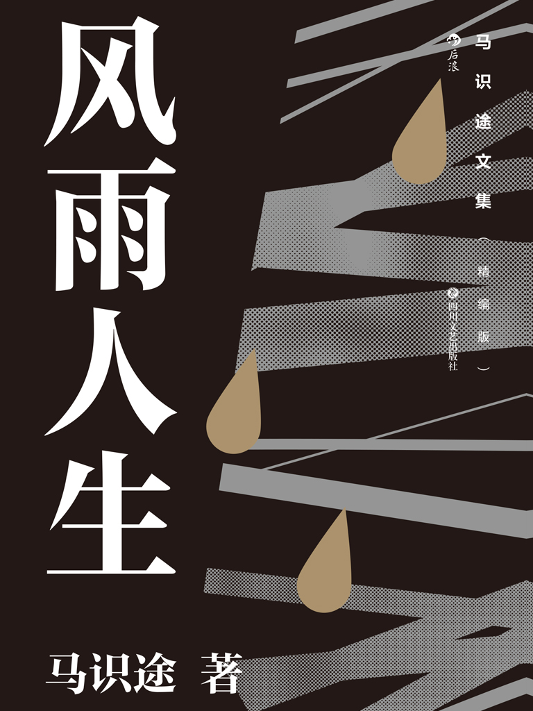 马识途文集(精编版)风雨人生