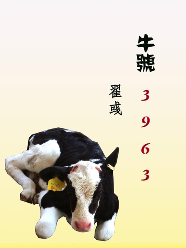 牛号3963(千种豆瓣高分原创作品·看小说)