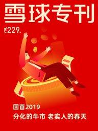 雪球專刊·回首2019分化的牛市 老實人的春天(第229期)