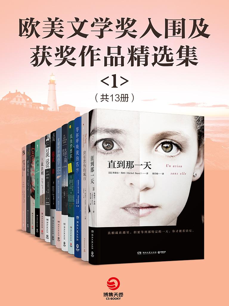 欧美文学奖入围及获奖作品精选集 1(共13册)